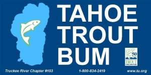 Tahoe Trout Bum
