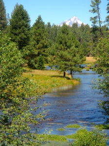 The view from the head of the Metolious River