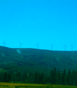 Windmills line the mountain outside of Burney