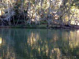 San Lorenzo River, I shall miss this place where I fell in love with steelhead.